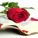 Стихи любимым